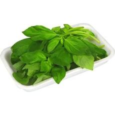 Базилик зеленый кг *
